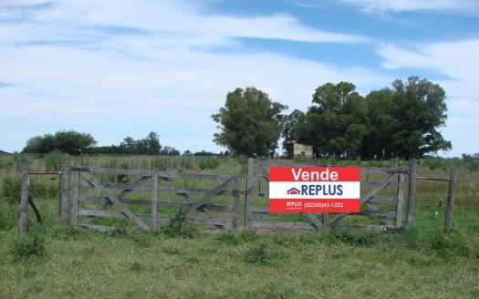 replus vende campo de 26 hectáreas en venta en lincoln ID 24744