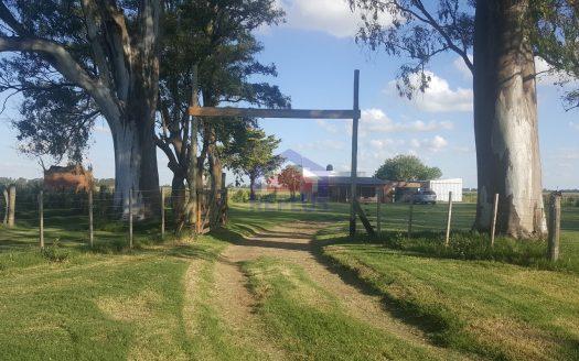 casa y campo en alquiler en lincoln ID 25524