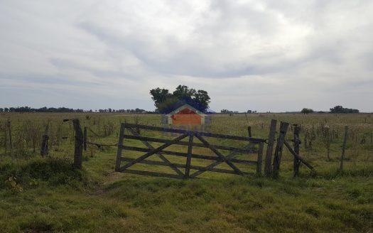 replus vende campo de 26 hectáreas en venta en lincoln ID 26511